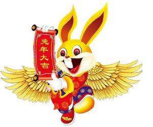 Coniglio fortunato - Lucky rabbit
