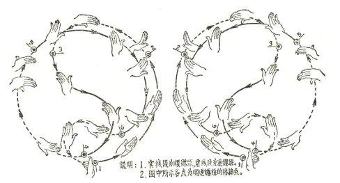 Taijiquan - Tai Chi Chuan - La forma Yang